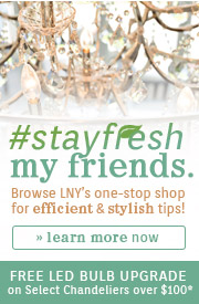 #StayFresh My Friends | Efficient & Stylish Tips