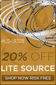 20% OFF LITE SOURCE!