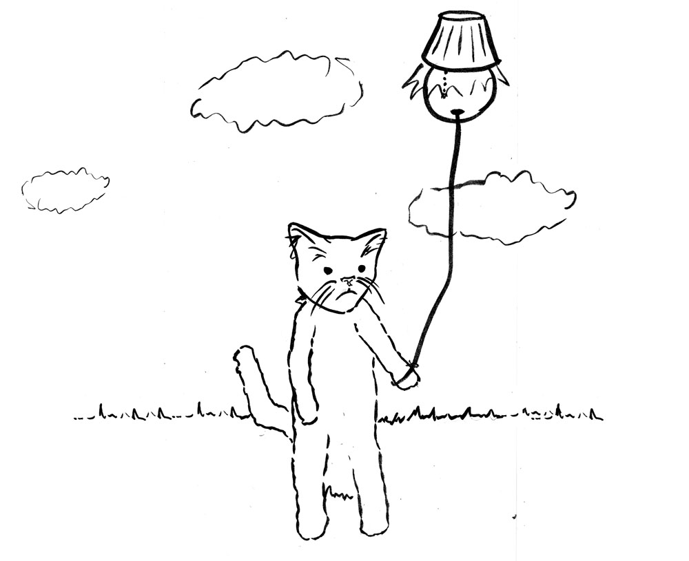 cat with a lamp balloon