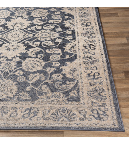 41ELIZABETH 51587-DG Aquamarine 87 X 63 inch Denim/Light Gray/Wheat/Charcoal/Black/Cream Rugs cyl2306-front.jpg