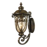 41 Elizabeth 47184-HB Lupe 1 Light 24 inch Hazelnut Bronze Outdoor Sconce