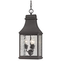 41 Elizabeth 47235-C Chad 3 Light 9 inch Charcoal Outdoor Hanging Light