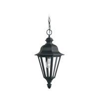 41 Elizabeth 40404-BC Sileas 1 Light 10 inch Black Outdoor Pendant