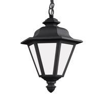 41ELIZABETH 42932-BSW Sileas 1 Light 10 inch Black Outdoor Pendant
