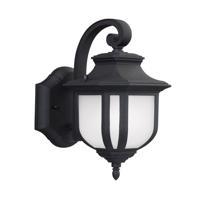 41ELIZABETH 43041-BSE March 1 Light 13 inch Black Outdoor Wall Lantern