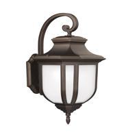 41 Elizabeth 43044-ABSE March 1 Light 15 inch Antique Bronze Outdoor Wall Lantern
