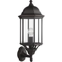 41ELIZABETH 41136-ABCP Ravinger 1 Light 22 inch Antique Bronze Outdoor Wall Lantern