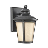 41ELIZABETH 42960-BIEH Valda 1 Light 11 inch Burled Iron Outdoor Wall Lantern