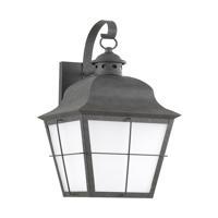 41ELIZABETH 43036-WCFS Vita 1 Light 21 inch Weathered Copper Outdoor Wall Lantern