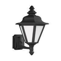 41ELIZABETH 42936-BSW Sileas 1 Light 20 inch Black Outdoor Wall Lantern