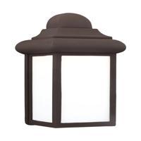41 Elizabeth 43175-BSW Costante 1 Light 9 inch Bronze Outdoor Wall Lantern