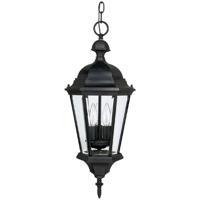 41 Elizabeth 46600-BC Spencer 3 Light 10 inch Black Outdoor Hanging Lantern