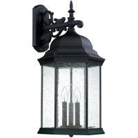 41ELIZABETH 46617-BAG Severinus 3 Light 26 inch Black Outdoor Wall Mount