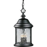 41 Elizabeth 41829-TBWS Renee 3 Light 10 inch Textured Black Outdoor Hanging Lantern