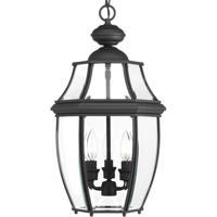 41 Elizabeth 42045-BCBI Natalie 3 Light 11 inch Black Outdoor Hanging Lantern