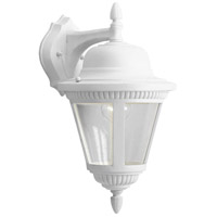 41ELIZABETH 41922-WCS Marcellus 1 Light 16 inch White Outdoor Wall Lantern, Medium