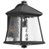 41ELIZABETH 41933-B Idina 1 Light 17 inch Textured Black Outdoor Wall Lantern, Large