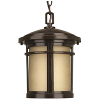 41ELIZABETH 41952-ABEU Ulises 1 Light 9 inch Antique Bronze Outdoor Hanging Lantern