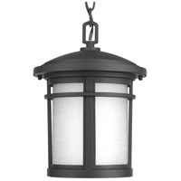 41ELIZABETH 41953-BEW Ulises 1 Light 9 inch Textured Black Outdoor Hanging Lantern