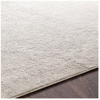 41ELIZABETH 48022-LG Ainsley 180 X 144 inch Light Gray/White Rugs ais2306-texture.jpg thumb