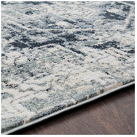 41ELIZABETH 48233-LG Acton 90 X 63 inch Light Gray/Medium Gray/White/Cream Rugs, Rectangle apy1015-texture.jpg thumb