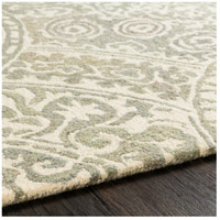 41ELIZABETH 51470-T Arcadicus 36 X 24 inch Taupe/Cream/Moss/Sage Rugs, Rectangle csi1005-texture.jpg thumb