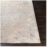 41ELIZABETH 51840-TG Ademaro 87 X 63 inch Taupe/White/Medium Gray Rugs, Rectangle dur1012-front.jpg thumb