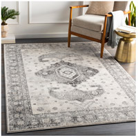 41ELIZABETH 53679-CG Alton 67 X 51 inch Charcoal/Medium Gray/Black/Tan/Beige/White Rugs igo2322-roomscene_201.jpg thumb