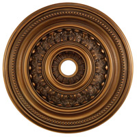 41ELIZABETH 40326-AB Carlyle Antique Bronze Medallion