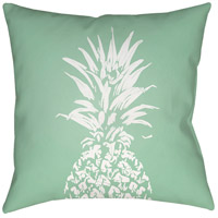 surya-pineapple-outdoor-cushions-pillows-pine002-2020