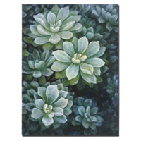 uttermost-succulents-decorative-items-34227