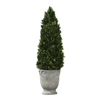 Boxwood Artificial Flower or Plant