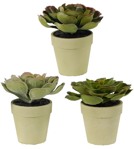 A&B Home 29089 Succulents Green Faux Botanical, Set of 3 photo
