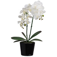 Orchid with Ceramic Pot White Faux Botanical