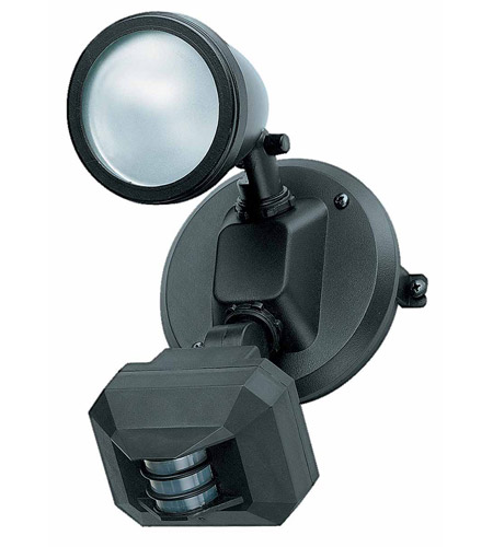 Access Lighting Ariel 1 Light Outdoor Spotlight in Black 20308-BL/FST photo
