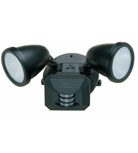 Access Lighting Ariel 2 Light Outdoor Spotlight in Black 20310-BL/FST photo