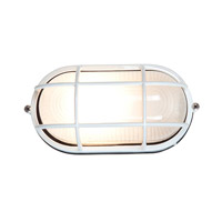 Access Lighting Nauticus 1 Light Outdoor Flush Mount in White 20290-WH/FST