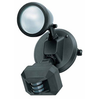 Access Lighting Ariel 1 Light Outdoor Spotlight in Black 20308-BL/FST photo thumbnail