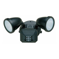 Access Lighting Ariel 2 Light Outdoor Spotlight in Black 20310-BL/FST photo thumbnail