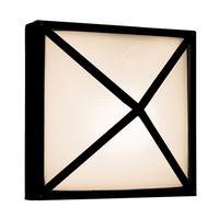 Oden 2 Light Black Outdoor Wall in Incandescent