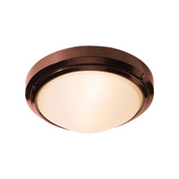 Access Lighting Oceanus 1 Light Wet Location Ceiling or Wall Fixture in Bronze with Frosted Glass 20355MG-BRZ/FST