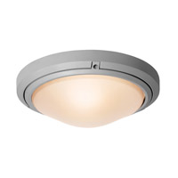 Access Lighting Oceanus 2 Light Wet Location Ceiling or Wall Fixture in Satin with Frosted Glass 20356MG-SAT/FST