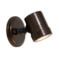 Access Lighting Myra 1 Light Outdoor Spotlight in Bronze 23025MG-BRZ/CLR