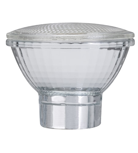 Paulmann by AFX Signature Bulb Cover in Clear PM-87010 photo