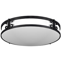 AFX Lighting CL Series 2 Light Flush Mount in Black Iron  CLF2232BKT
