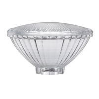Paulmann by AFX Signature Bulb Cover in Clear PM-87009