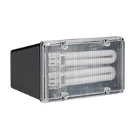 AFX Lighting TPDW Series 2 Light Outdoor Fluorescent Flood light in Black with Clear Lexan Lens TPDW213BKPLT