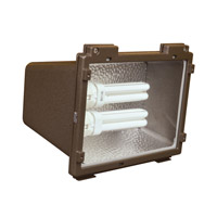AFX Lighting TPDW Series 2 Light Outdoor Fluorescent Flood light in Bronze with Clear Lexan Lens TPDW213RBPLT