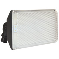 AFX Lighting TPDW Series 1 Light Outdoor LED Flood light in Black with Clear Lexan Lens TPDW70050LBK