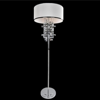 Allegri 027601-010-FR001 Vermeer 60 watt Chrome Floor Lamp Portable Light in Firenze Clear